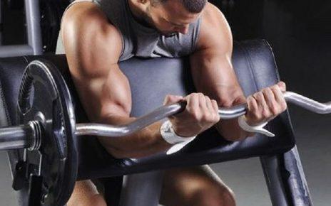 Comment créer son programme musculation